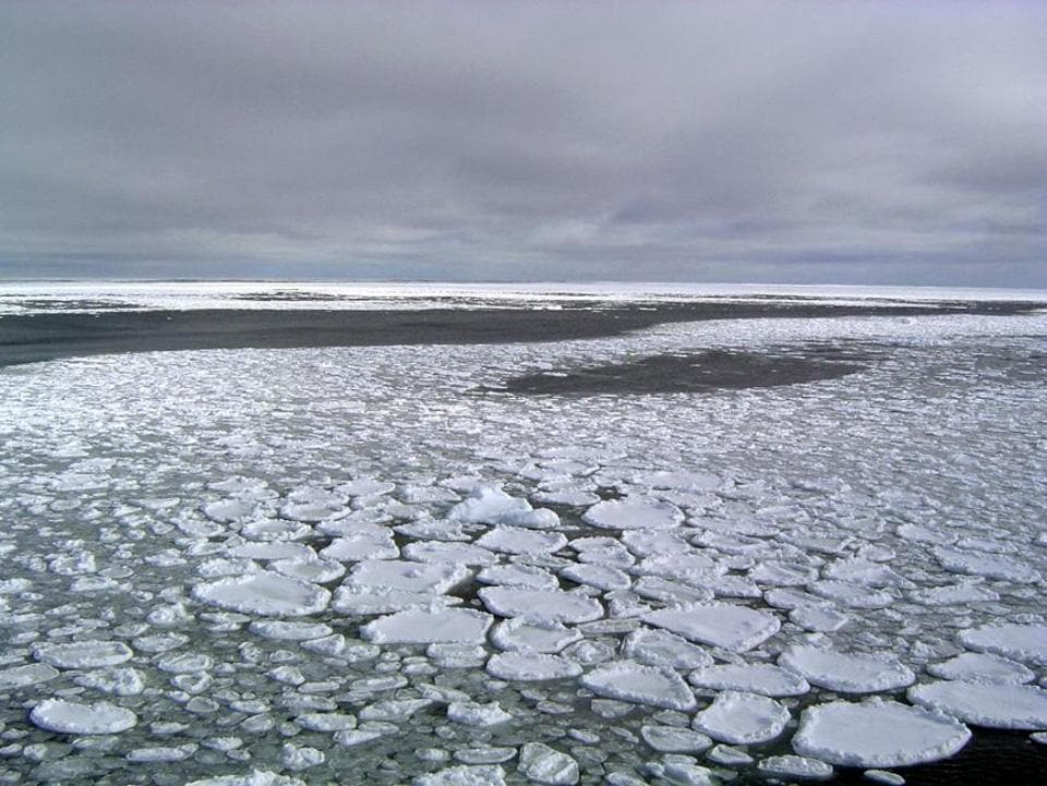 Annual average extent of Antarctic sea ice hit its lowest mark, wiping out three-and-a-half decades of gains, and then some, according to a study in the Proceedings of the National Academy of Sciences on Monday.