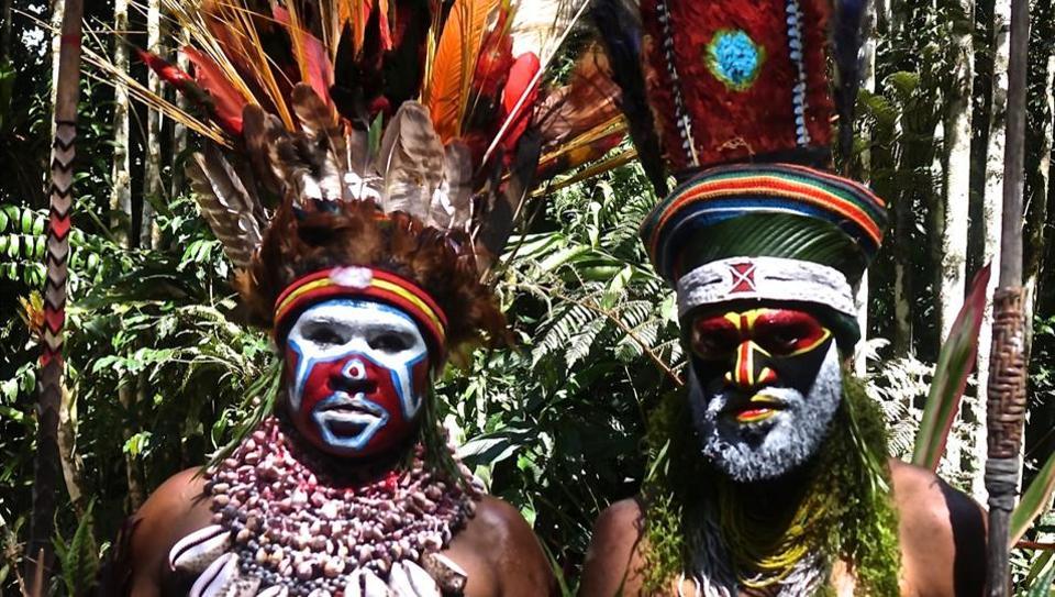 Papua New Guinea,extraordinary birds,birds