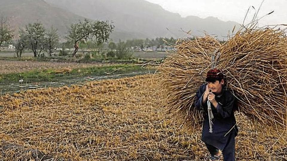 UN lab gurugram,afghan land records,udyog vihar