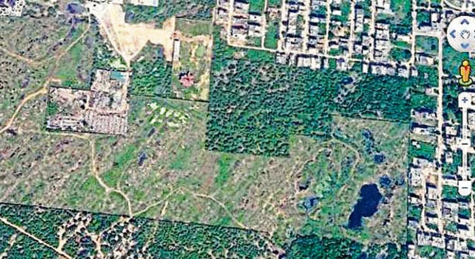 Haryana government moves Supreme Court against NGT Faridabad 'forest' plot ruling