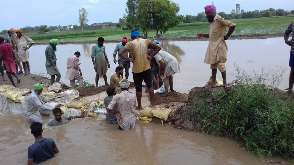 The Uddat canal in Mansa breaches its bank on Wednesday, July 17, 2019, flooding over 100 acres of fields.
