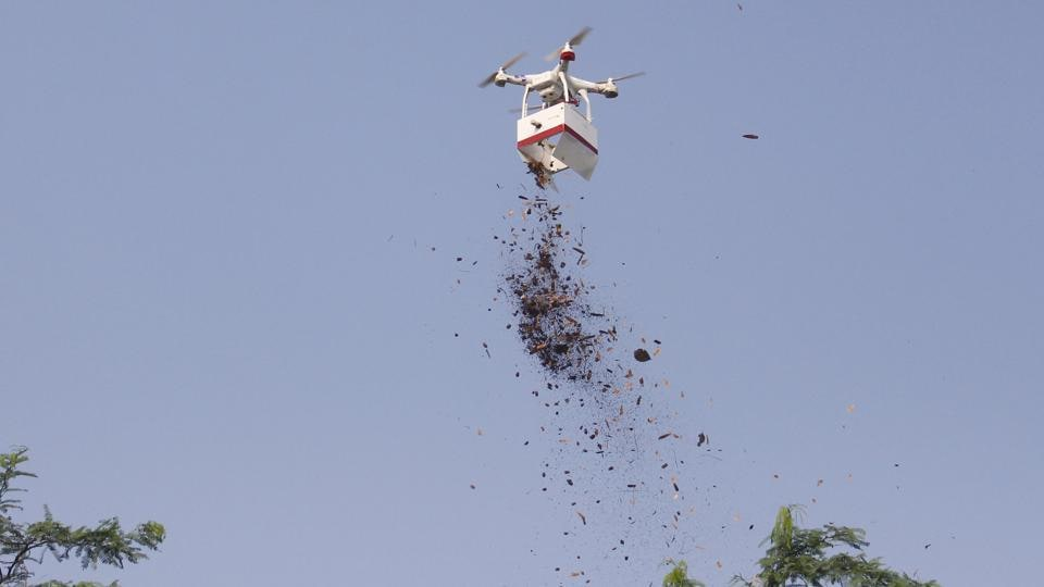 NGO uses drones to scatter 1 crore seeds in Aravallis