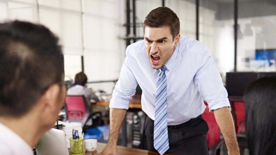 Employees are likely to respond negatively to their boss' bullying behaviours.
