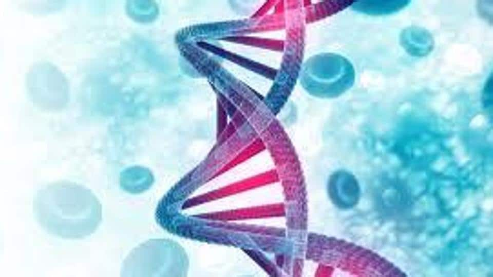 High court bench directed the CBI to investigate the anomalies in the FSL reports and register a preliminary inquiry to look into the working of the department, particularly preparation of DNA test reports.