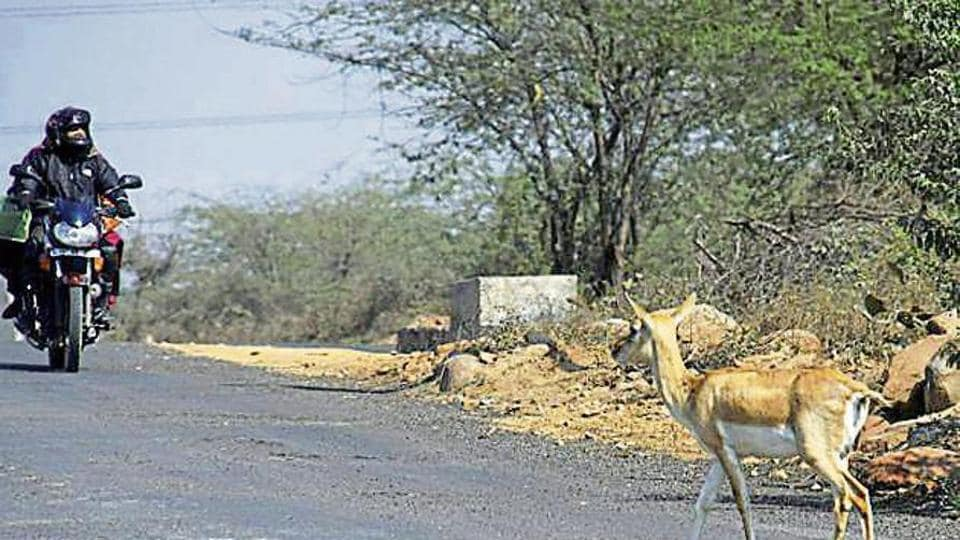 The app will record all rescue operations, along with its location and provide inputs to assess man-animal conflicts.