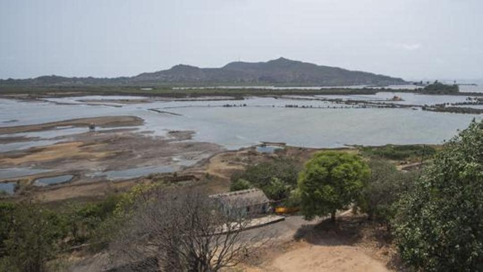 Environmentalists have questioned the state mangrove and wetland panel's claim that Panje is not a wetland. (Reptresentative Image)