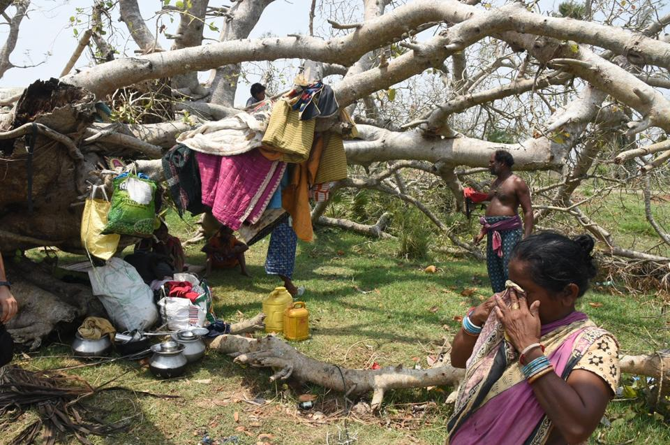 A tribal family seen under a collapsed tree that was hit by cyclone Fani, at Birapratap Pur Village, Odisha.