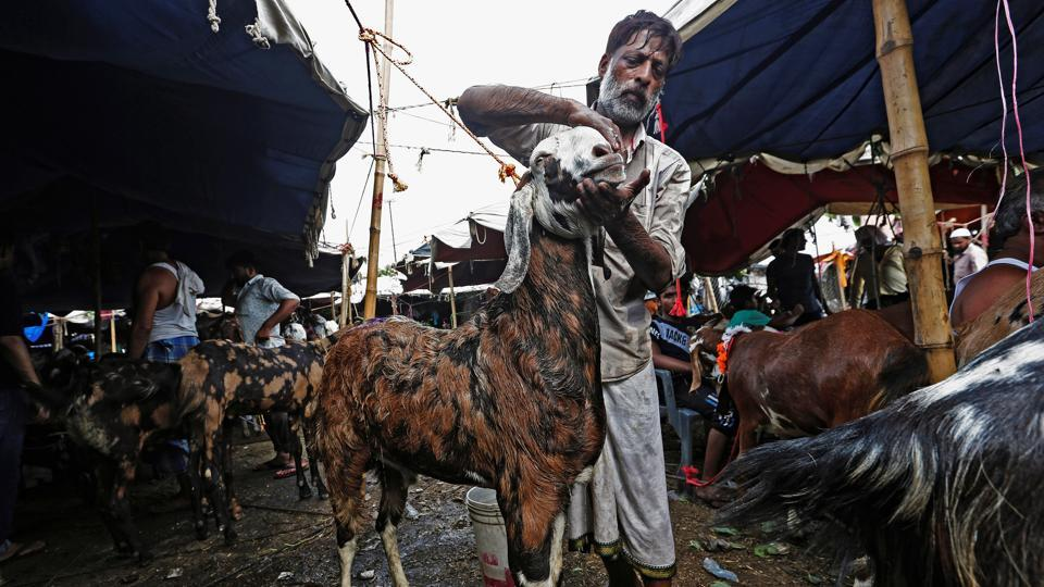 A trader cleans his goat before selling it at a livestock market ahead of the Eid al-Adha festival in the old quarters of Delhi. (Adnan Abidi / REUTERS)