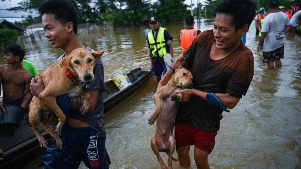 Residents carry their dogs to a boat . About two-thirds of the state's Ye township remained flooded, an administrator said, as drone footage showed only the tops of houses, tree branches and satellite dishes poking above the waters.  (Sai Aung Main / AFP)