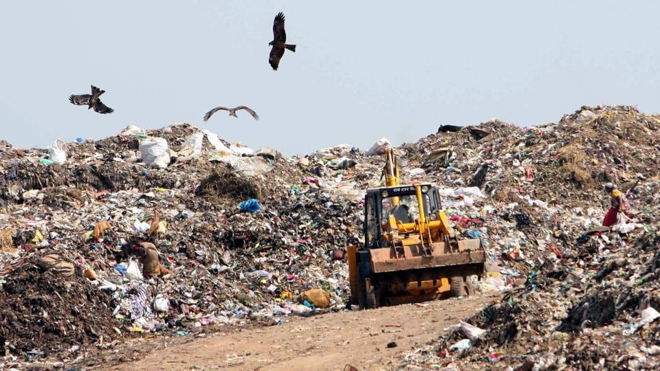 The Central Pollution Control Board (CPCB) has directed all land-owning agencies in Delhi-NCR to provide a list of areas where solid waste is openly dumped.