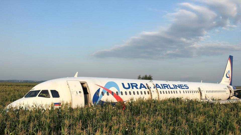 A view shows the Ural Airlines Airbus 321 passenger plane following an emergency landing in a field near Zhukovsky International Airport in Moscow Region, Russia. The Ministry of Health said that 23 people suffered injuries, but that nobody had been killed when the Ural Airlines Airbus 321 came down in a field southeast of Moscow after striking a flock of gulls, disrupting its engines. (Stringer / REUTERS)