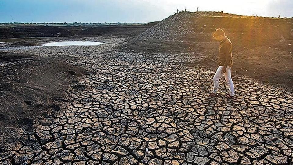 Despite receiving excess rainfall, majority parts of the state, including Marathwada and Vidarbha have remained dry.