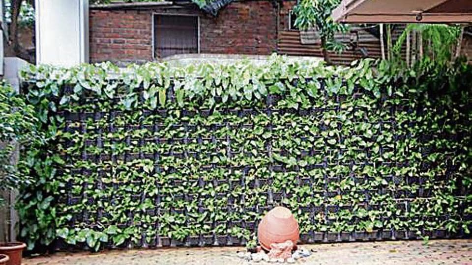 Mumbai's Smt Kamaladevi Gauridutt (KG) Mittal College of Arts and Commerce  has  developed vertical gardens on its eight-foot-high compound walls.