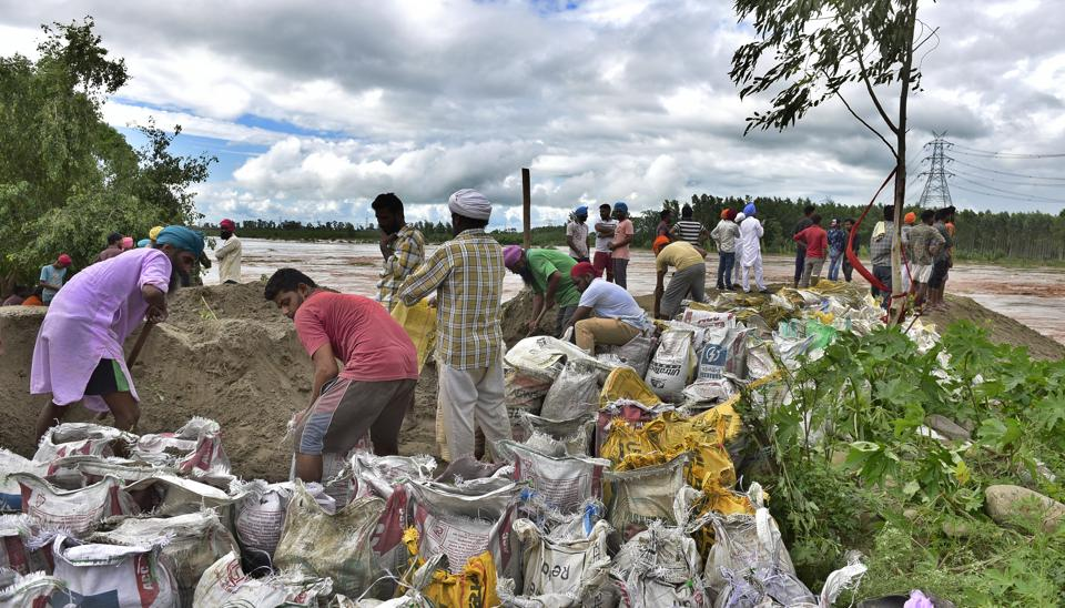 Residents of Ghari Fazil along with employees of irrigation department plugging the breach on the banks of Sutlej river in Mattewara area in Ludhiana on Sunday.
