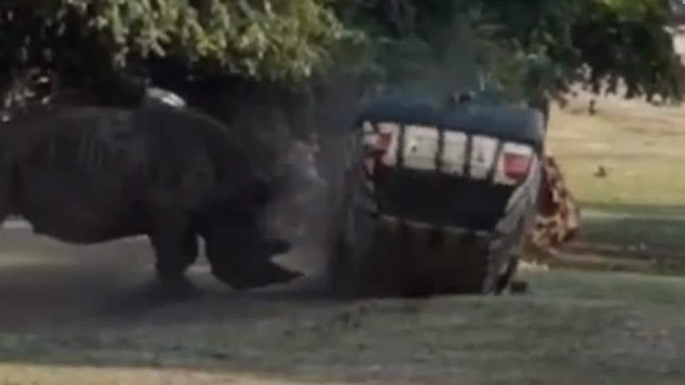 Germany: angry rhino flips vehicle at safari park