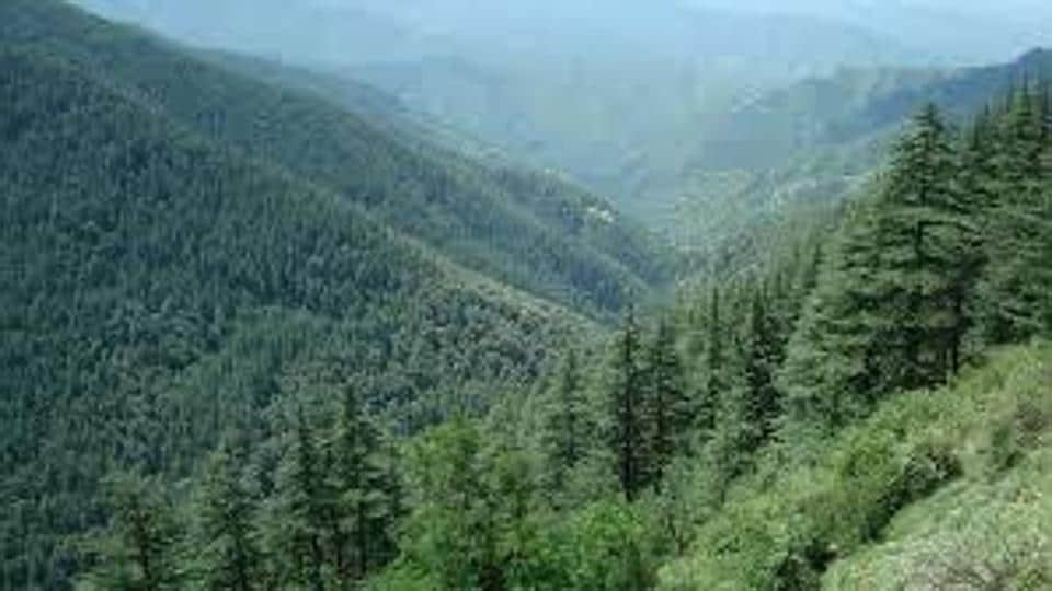 State governments are expected to utilize the funds for regeneration of forests, raising plantations, wildlife management, voluntary relocation of villages from protected areas and supply of wood-saving cooking appliances in forest fringe villages, among other things.