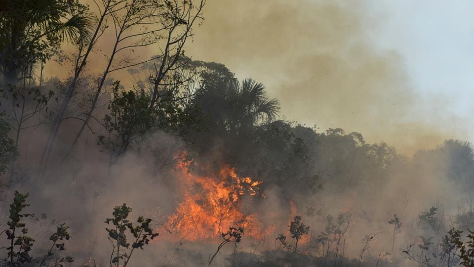 Brazil will hire local environmental police on a short-term basis to combat Amazon fires