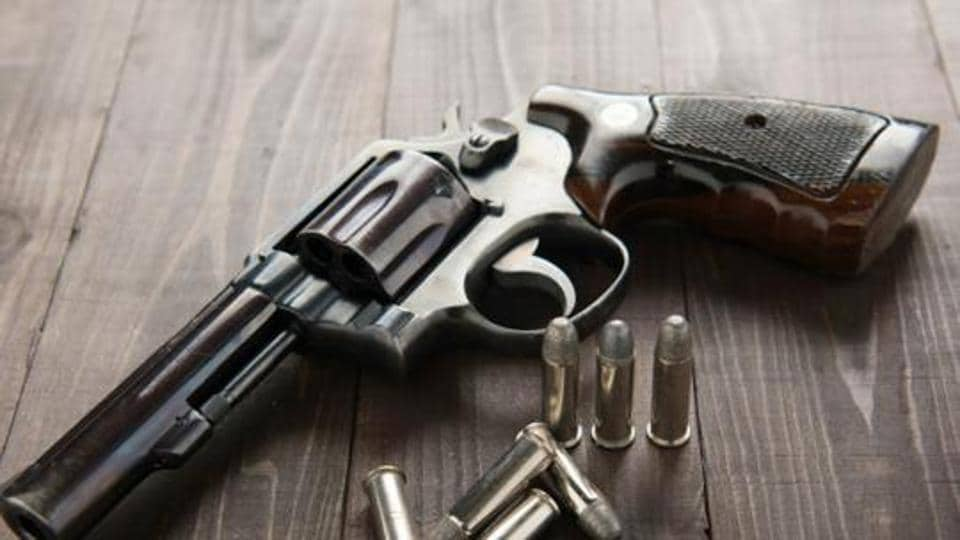 A 40-year-old private firm employee reportedly killed himself using his licensed revolver after shooting at his mother-in-law at his residence in Gomti Nagar extension, Lucknow, on the Saturday-Sunday intervening night.