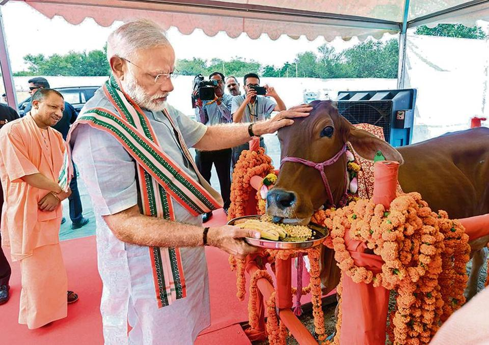 Image result for not cow stories Mr narendra modi speak on country economy