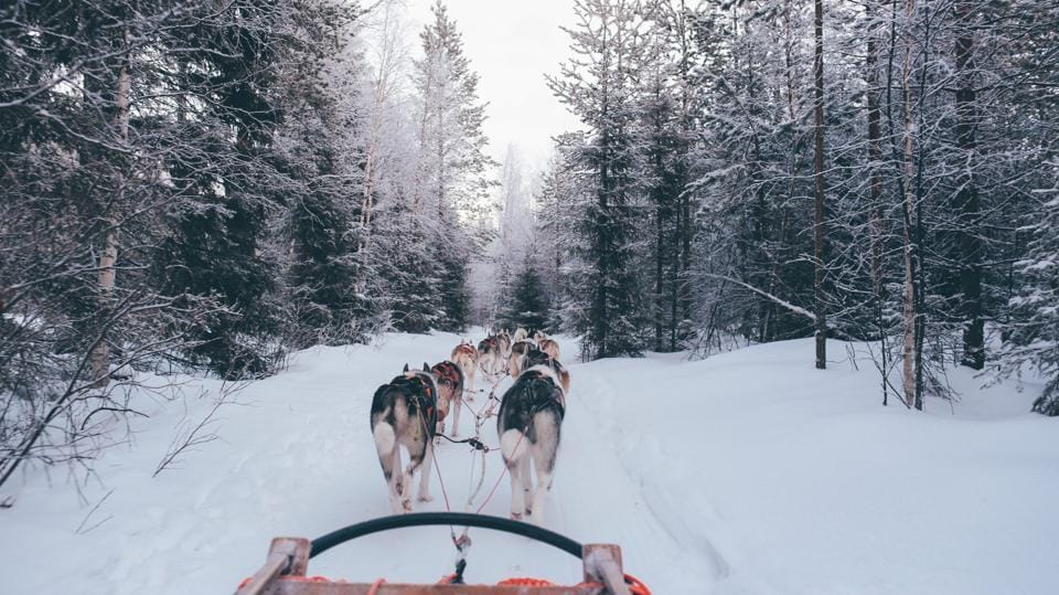Shorter winters are casting doubts over dog sledding in this Greenland village.
