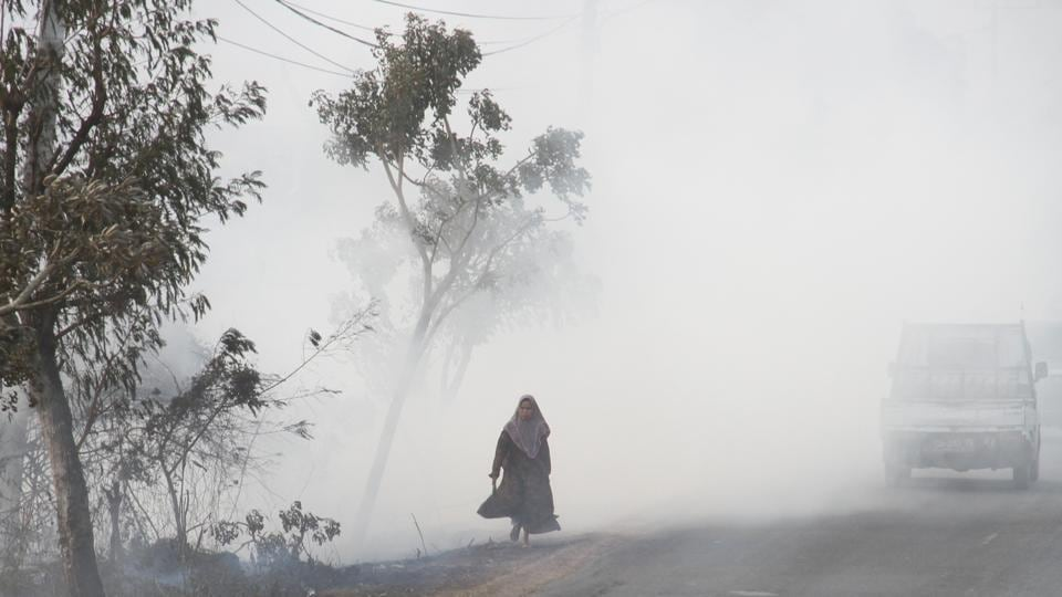 "A woman walks along the road covered in smog due to a forest fire in Banjarbaru. ""This should remind people we are facing a climate crisis,"" he said of the recent fires around the world. ""Industries are looking to expand plantations using fires."" And he warned Indonesia's fires would add to the sprawling archipelago's climate-damaging emissions, already among the highest in the world. (Bayu Pratama S / Antara Foto via REUTERS)"