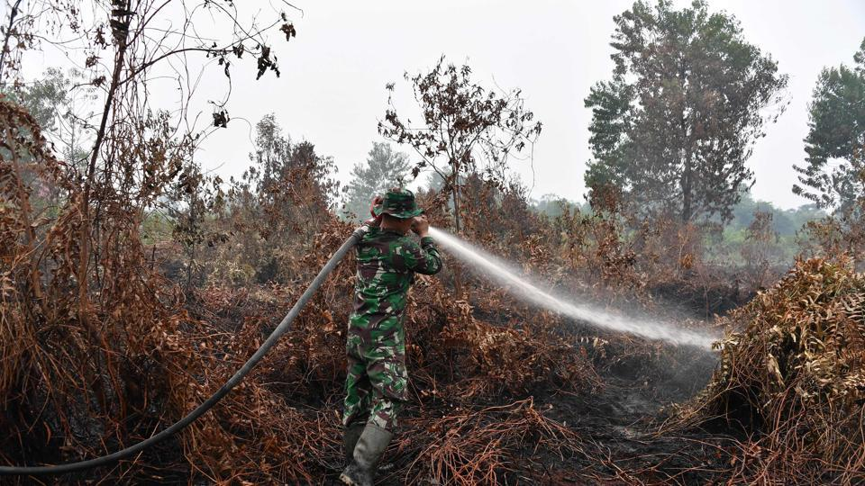 Indonesian security forces have been struggling to tame the blazes as many burn underground in carbon-rich peat, which has been cleared across vast areas of Indonesia for plantations. After being cleared and drained of water, peat is highly combustible and hard to extinguish once ablaze.s (Adek Berry / AFP)