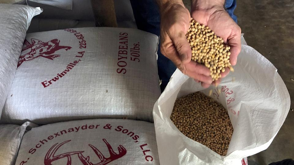 China will suspend tariff hikes on soybeans, pork and some other farm goods, the Xinhua News Agency said, citing the Cabinet planning agency and the Commerce Ministry.