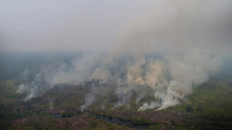 Peat fires near the Orangutan Rehabilitation Centre inmNyaru Menten, central Kalimantan. Thick smoke is endangering the health of some 355 orangutans currently in the rehabilitation centre. The World Bank estimated the fires cost Indonesia $16 billion in 2015 and a Harvard and Columbia study estimated the haze hastened 100,000 deaths in the region. (Borneo Orangutan Survival Foundation / AFP)