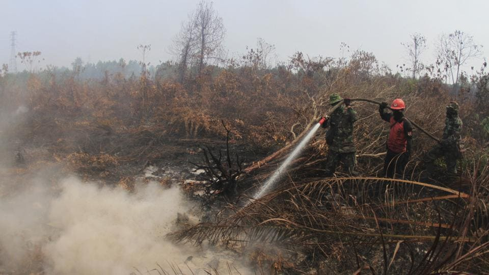 Soldiers and a fire fighter spray water to extinguish forest fire at a peatland field in Kampar. Many areas of Indonesia are prone to rapid burning because of the draining of swampy peatland forests for pulp wood and palm oil plantations. Poor visibility caused by smoke caused flight delays at several airports in Indonesia and Malaysia, and prompted authorities to shut some schools in both countries. (Rafka Majjid / AP)