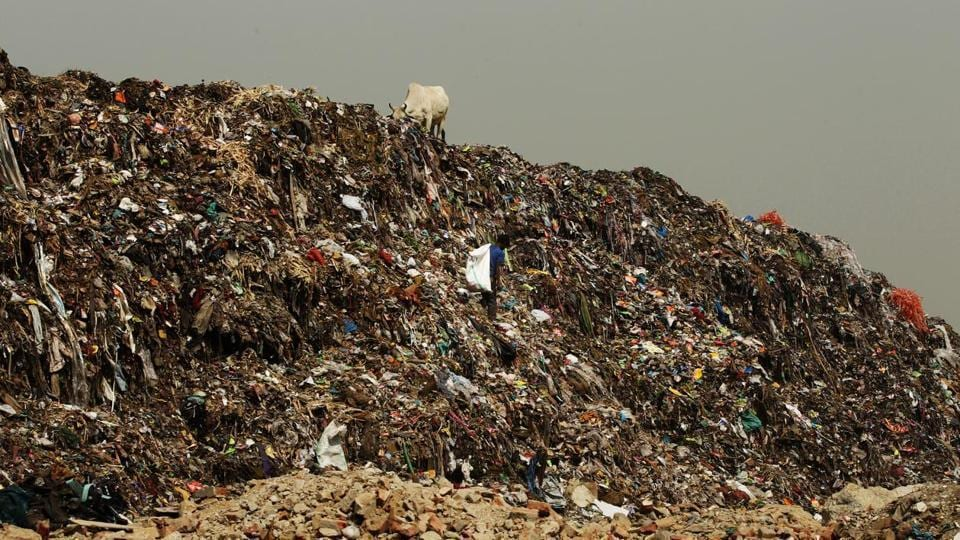 South Delhi Municipal Corporation (SDMC) Tuesday sealed four godowns that were illegally stocking plastic waste, including used biomedical equipment such as gloves, catheters, tubes and blood bags