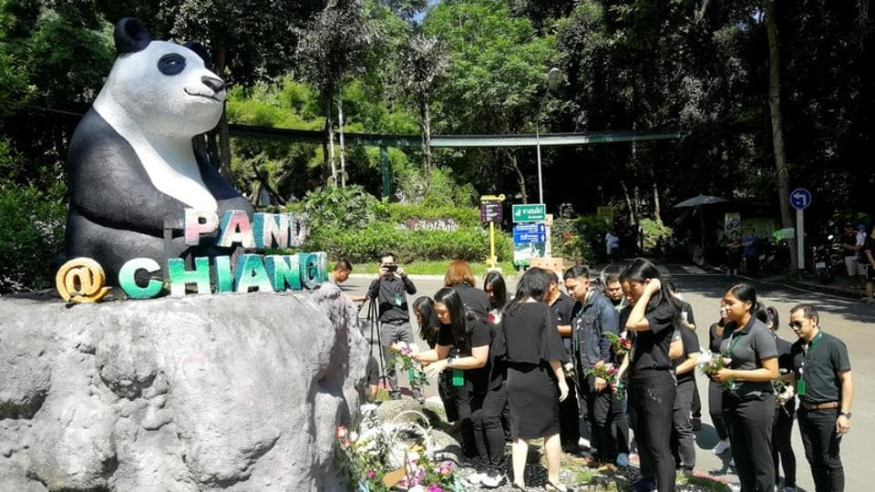 Zoo workers lay flowers at a Panda statue days after the 19-year-old panda Chuang Chuang died at the Chiang Mai zoo, Chiang Mai, Thailand, September 18, 2019.