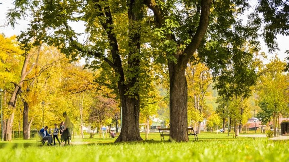 Long-term exposure to green spaces could play an important role in preventing metabolic syndrome as a whole, as well as individual components like large waist circumference, hypertension.