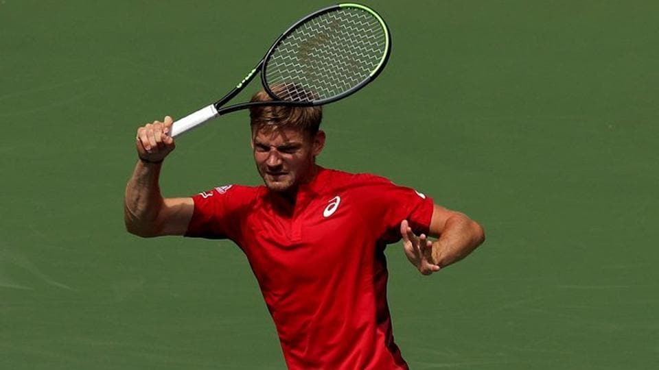File image of David Goffin