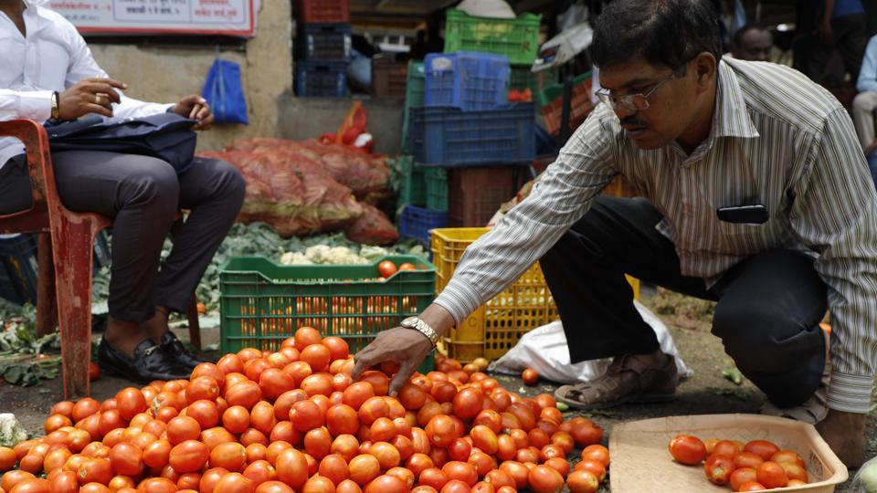 According to traders, tomatoes have turned costlier in the last few days as supplies have been impacted because of floods and heavy rains in the key growing states. (Representative Image)