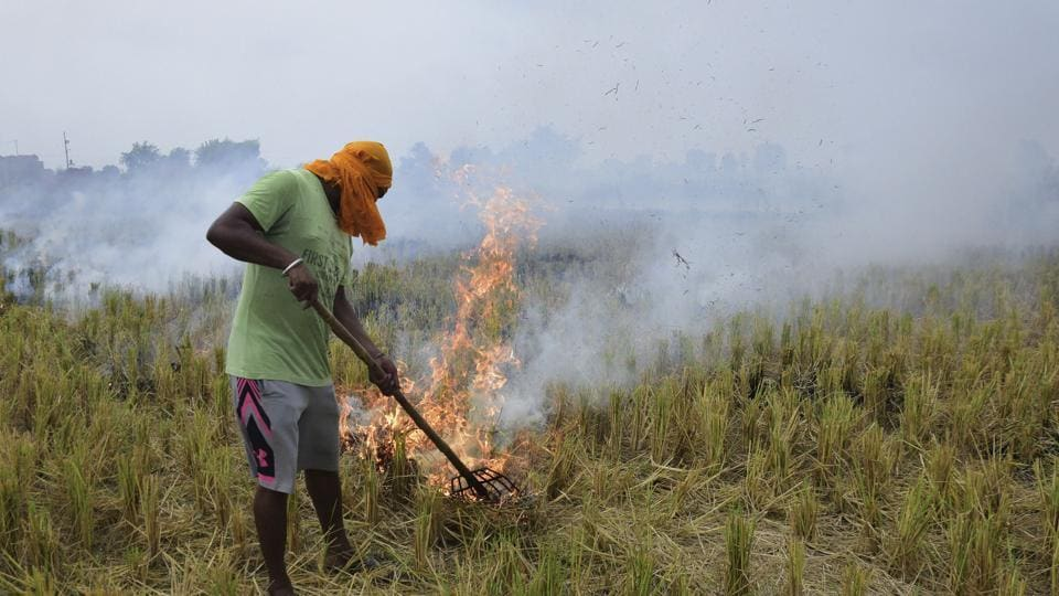 A farmer burns paddy stubble in a field, in a village on the outskirts of Amritsar, Thursday, Sept. 19, 2019. Stubble burning in the past has been considered as one of the major contributing factors for increasing air pollution and smoky haze around the adjoining states of Punjab and Haryana, especially New Delhi.