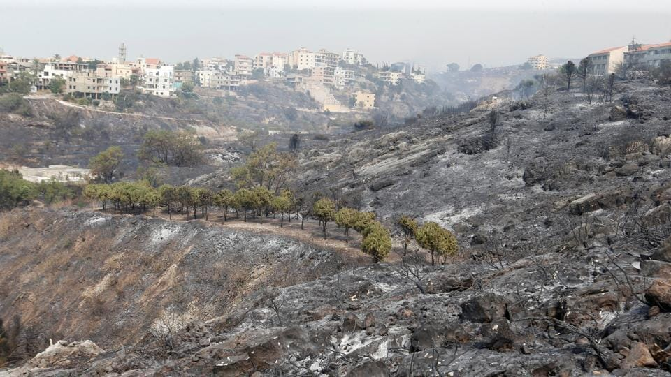 Burnt trees are seen after wildfires swept through Damour. In neighboring Syria, fires spread in the coastal provinces of Latakia and Tartus, as well as the central province of Homs, but authorities there brought all the fires under control. (Mohamed Azakir / REUTERS)
