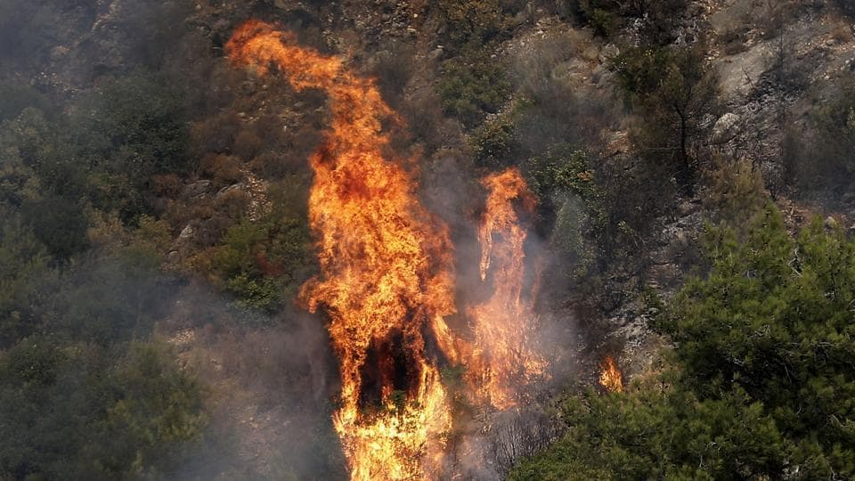 Fire takes out forests in the mountainous area that flank Damour river near the village of Meshref in Lebanon's Shouf mountains. Wildfires spread through parts of Lebanon on Tuesday after forcing some residents to flee their homes in the middle of the night, while others were stuck inside as the flames reached villages south of Beirut. (Joseph Eid / AFP)