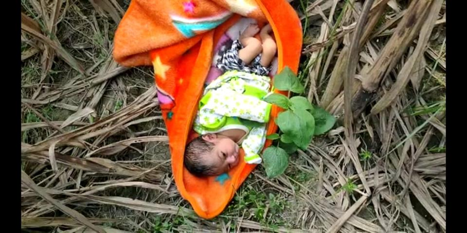 The baby was found lying in a sugarcane field in Mirganj locality of Bareilly.