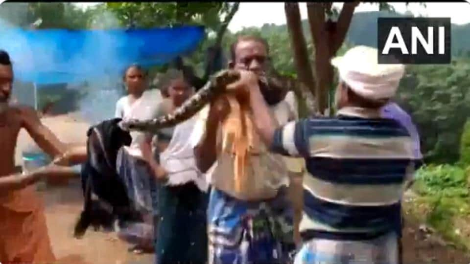 A video clip of the incident showed the snake around Bhuvanachandran nair's neck.