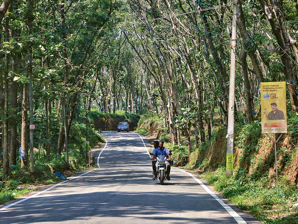 Malayali, macho, masculine: Riding through a rubber estate in Idukki, Kerala.