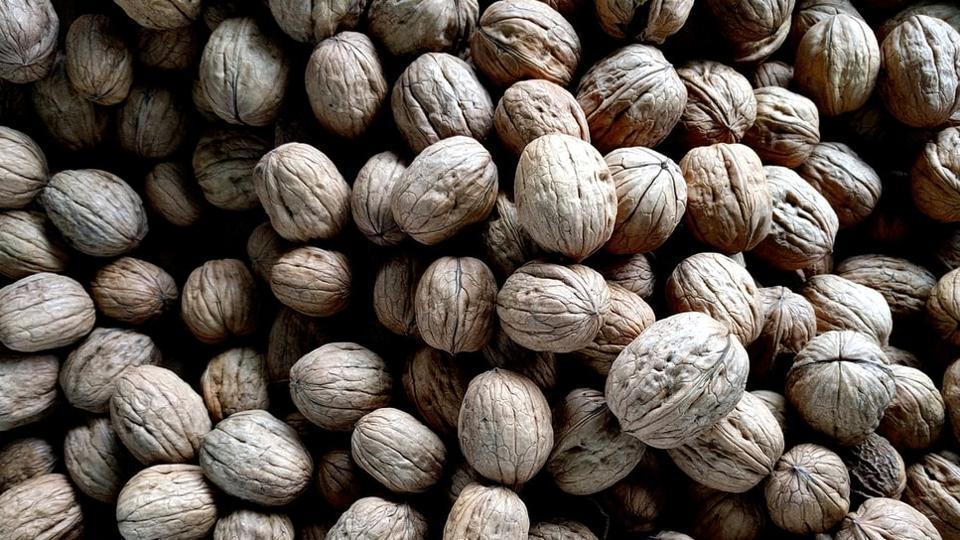 Eating at least four walnuts a day will help in curing many diseases, including cancer, obesity, diabetes as well as in maintaining body weight, cognitive, reproductive health and more.