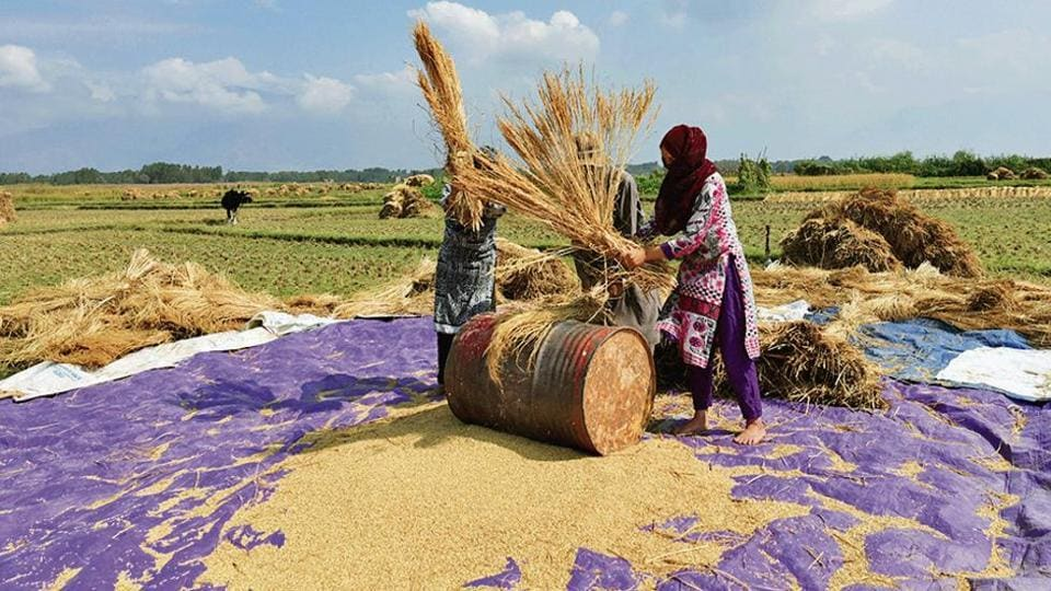 Ten states that have announced a series of farm loan waivers since 2014-15, equivalent to 1.4% of the country's gross domestic product (GDP), are yet to complete their promised write-offs.