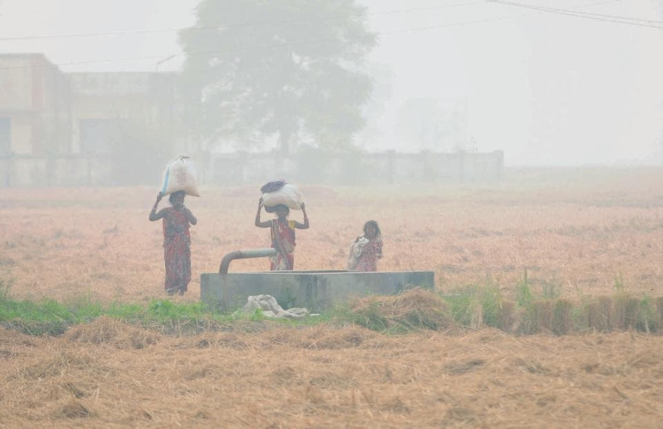 Farmers seem adamant on burning paddy residue. This has resulted in smog and an increase in number of patients reporting to hospitals with respiratory problems in Patiala and Sangrur districts.