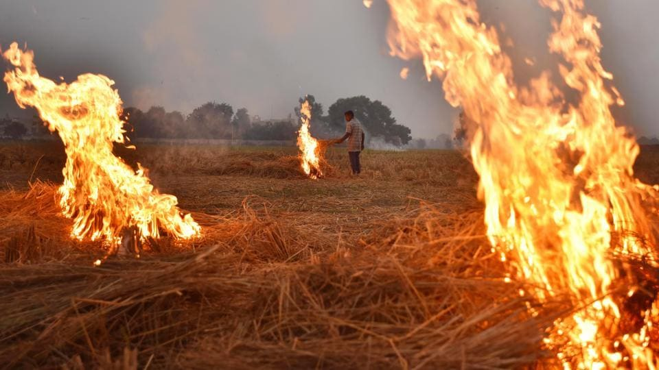 "A farmer burns paddy stubble at Chismani village in Ganaur city, on the outskirts of Sonipat. ""Delhi has turned into a gas chamber due to smoke from crop burning in neighbouring states. It is very important that we protect ourselves from this toxic air,"" chief minister Arvind Kejriwal said in a tweet on Friday morning. (Raj K Raj / HT Photo)"