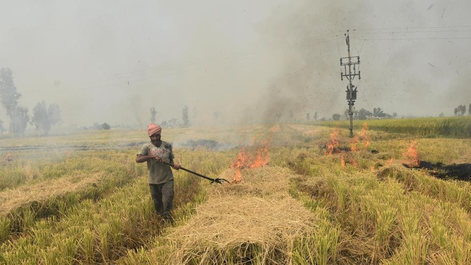 Some villages in Punjab that haven't reported a single case of post-harvest stubble burning.