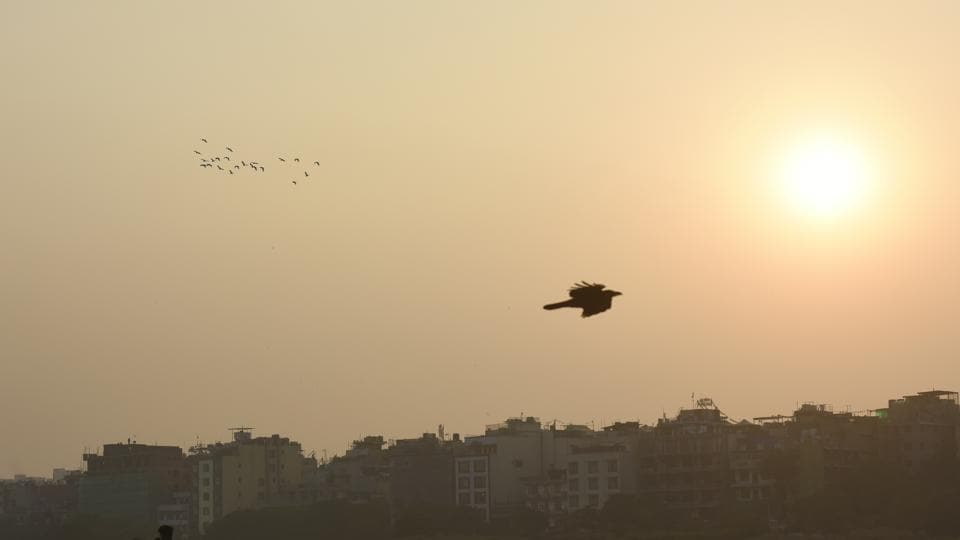 According to scientists in the India Meteorological Department,  a clear sky, sunlight and good wind speed helped bring air quality out of the emergency zone on Monday, November 4, 2019.