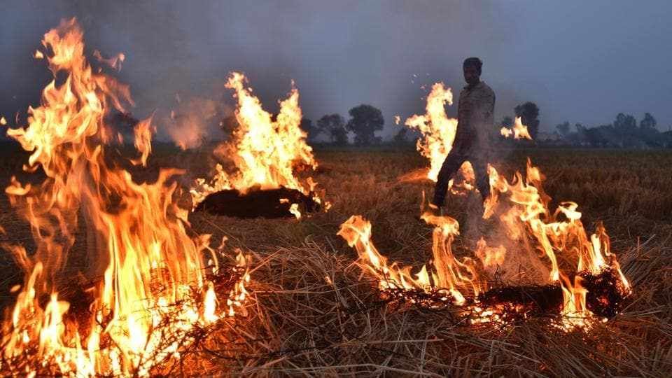 To address the problem of the stubble burning, an India born NRI businessman has proposed to set up 1,000 MW biomass energy generating plants in his home state Punjab.
