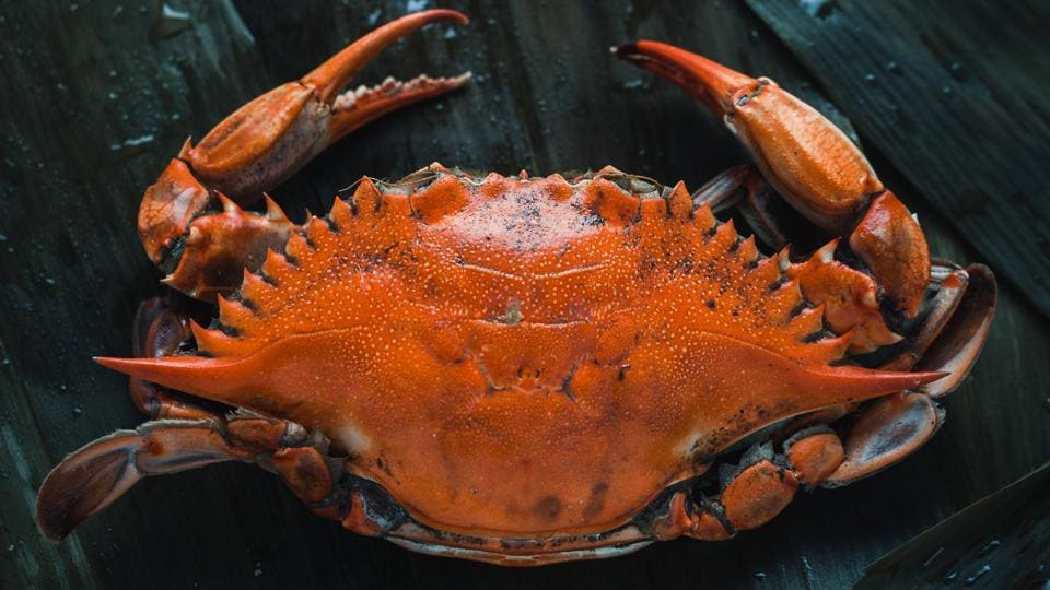 The crab sold at the auction has probably set a new world record (representational image).
