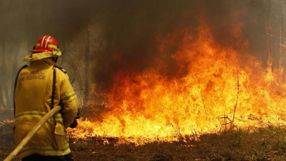 Winds fan ferocious fires in Australia's most populous state