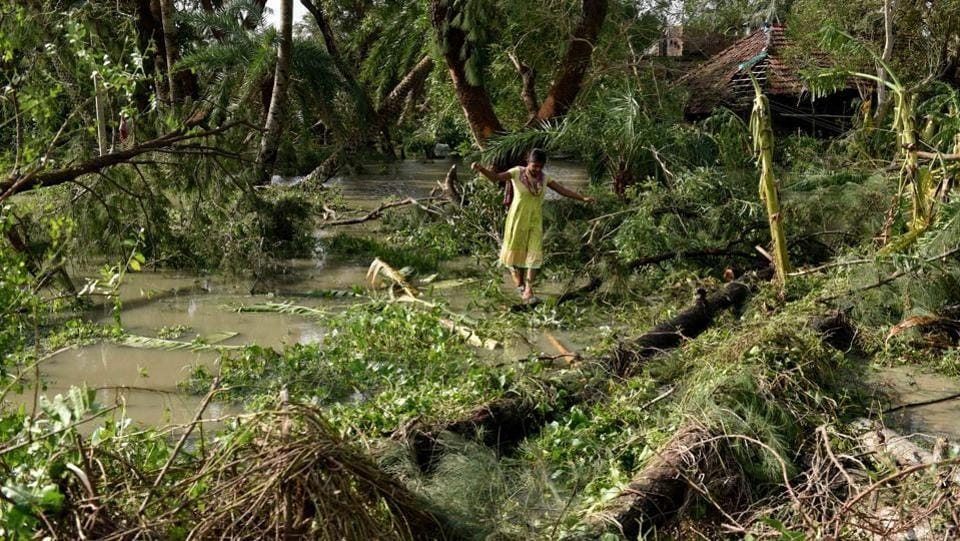 A view of destruction in the aftermath of Cyclone Bulbul, at Amarabati village, in Bakkhali, South 24 Parganas, West Bengal. Cyclone Bulbul, which made landfall with a wind speed of up to 125 km per hour on Saturday night, claimed ten lives in West Bengal and Odisha before losing steam and proceeding towards Bangladesh. It left a trail of destruction and damaged homes and crops across nine districts of southern Bengal and coastal Odisha. (Samir Jana / HT Photo)